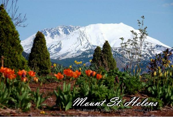 Mt. St. Helens From Forest Learning Center 5-14-2009